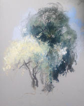 Blossoms in Grove Park Carshalton A4 pastel