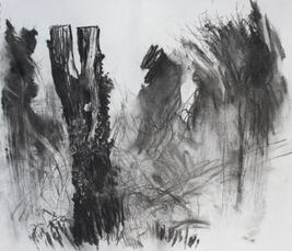 Late Winter, Wilderness Island A3 charcoal
