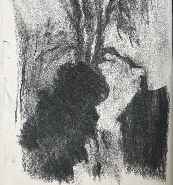Honeywood and Festival Walk, Early Winter Charcoal
