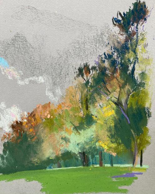 Beddington Park, Early Morning.