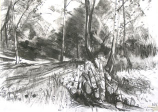 Summer Epping Forest A3 charcoal