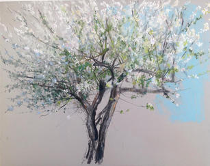 Apple Tree in blossom, A2 pastel on paper