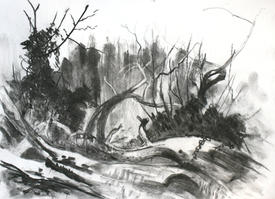 Late Winter, Wilderness Island Carshalton - A3 charcoal