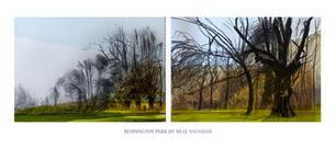 Bedington Park Panorama