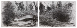 Lost in the wilderness- Wilderness Island - A2 double page Charcoal
