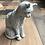 Thumbnail: SITTING CAT