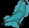 Pastel Bird