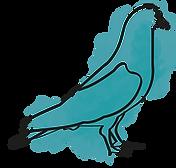 パステル鳥