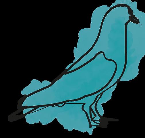 oiseau Pastel