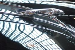 Autohaus Jaguar