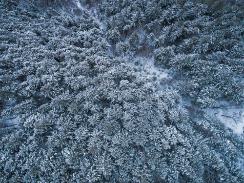Mont-Wright-Winter-05.jpg