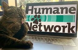 Cat Zinn with HN laptop.jpeg