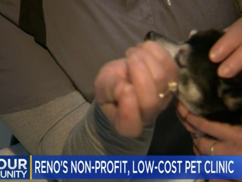 KTVN reports on Options as a safety net for pets in the community