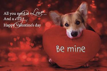 E Valentines 2021 dog be mine.jpg