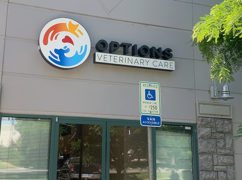 Options Update: Lease signed, new outdoor sign, Holly video