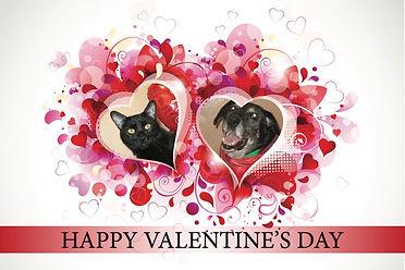 E Valentines 2021 dog and cat.jpg