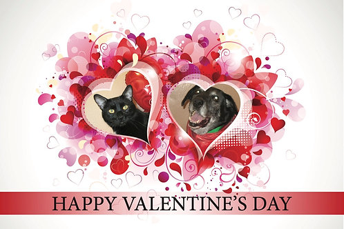 Happy Valentine's Day - Cat & Dog