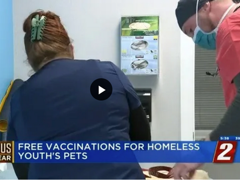 KTVN 2 News reports: Program Provides Free Veterinary Services to Homeless Youths