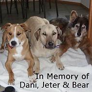Dani, Jeter, Bear, 2 cropped v5[107795].