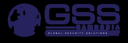 GSS ERT logo (2)-02.png