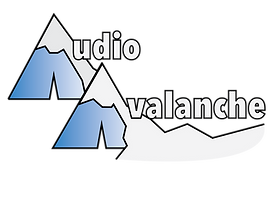 Avalanche_audio_tshirt-16.png