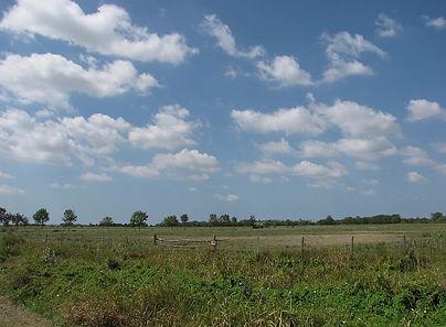 La Plaine.jpg