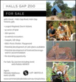 HallsGapZoo_Ad.jpg