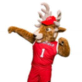 Fairfield University Mascot.jpg
