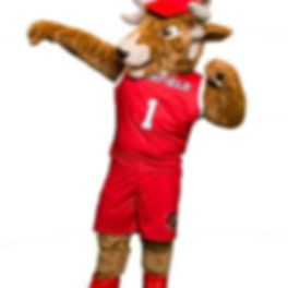 Fairfield University Mascot.jpg
