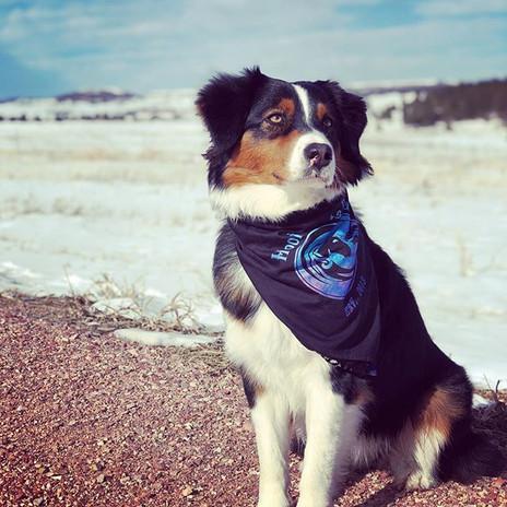 Gotta love Colorado winters #coloradoaus