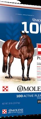Purina® Omolene #100® Active Pleasure