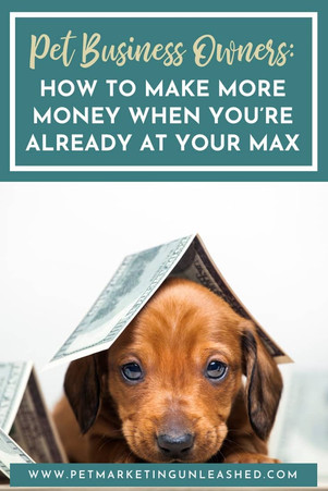 Pet Business Owners: How to Make More Money When You're Already at Your Max