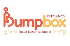 Pregancy Bump Box Logo jpeg.jpg