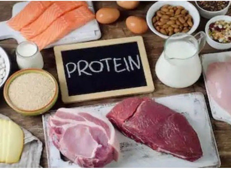 Protein In Pregnancy