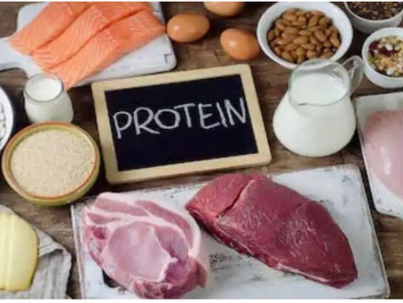Protein In Pregnancy