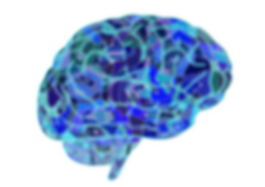 brain-951874_960_720-3543957.png