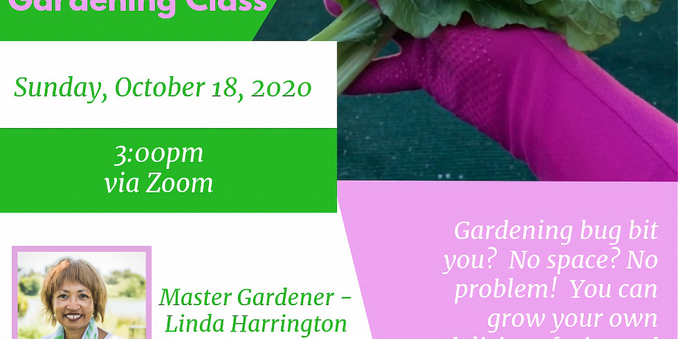 Sunshine & Seeds Gardening Self-Care Learning Series