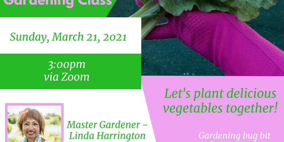Sunshine and Seeds Gardening Part 2