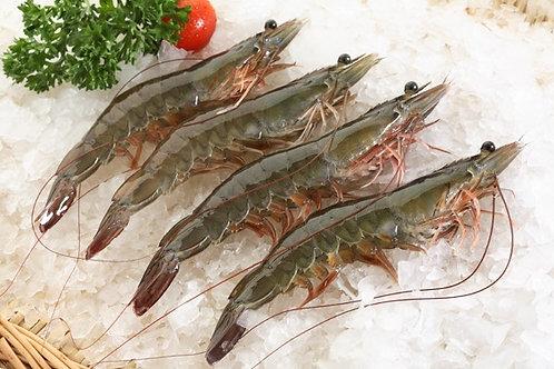 Shrimp W/ Head On-30/40【2lb】