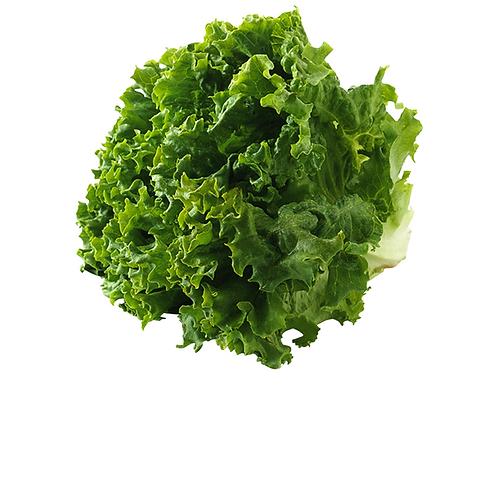 Fresh Green Leaf Lettuce-长生菜【3pcs】