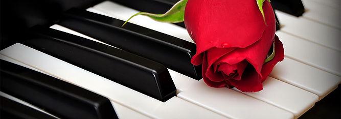 A Piano Rose 2.jpg