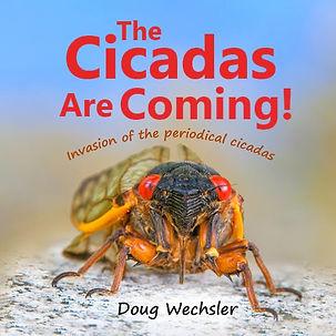 Cicadas-are-Coming-Book.jpg