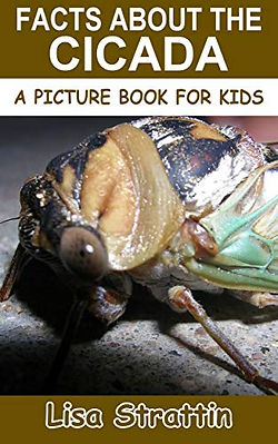 Facts About the Cicada (A Picture Book For Kids).jpg