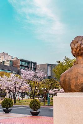 korean university.jpg