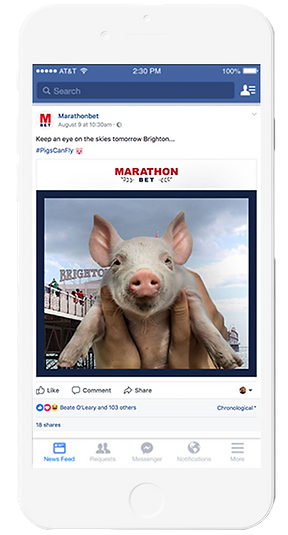 iPhone-White-Pigs1.png