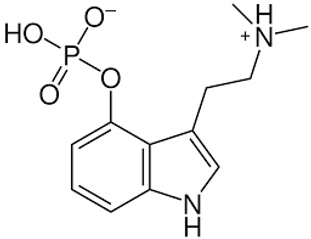 mushrooms chemistry.png