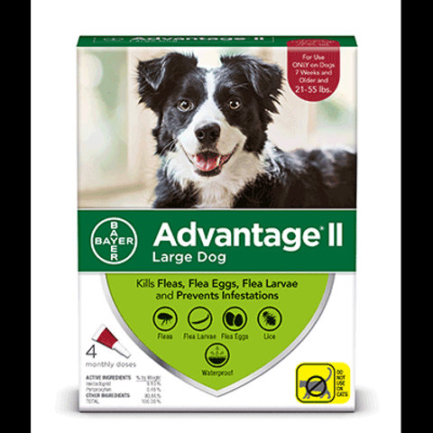 Advantage® II for dogs 6pks