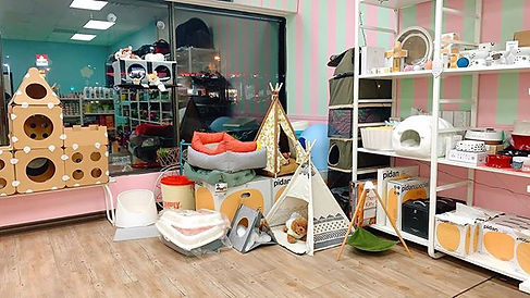 Our cozy beds and tents corner ⛺⛺⛺🧶🧶🧶