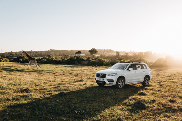Volvo - South Africa