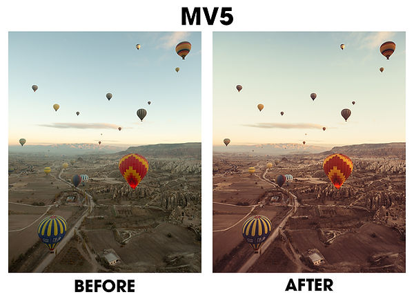 MV5.jpg